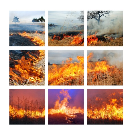 9 panel web prairie fire
