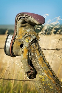 boot on a fence