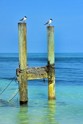Newport, Bahamas