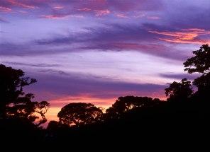 sunset web465