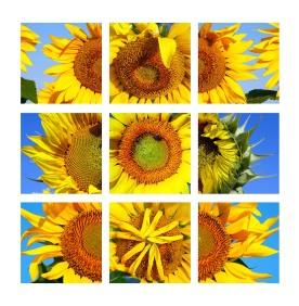 Untitled-1 SUN web 9 dvv